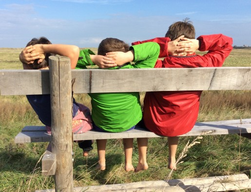 modules secundair onderwijs zwin natuur park